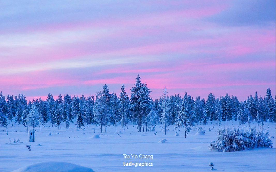 Magical sunrise in Lapland. Taken during a husky ride. I definitely miss the breathtaking landscape of Lapland