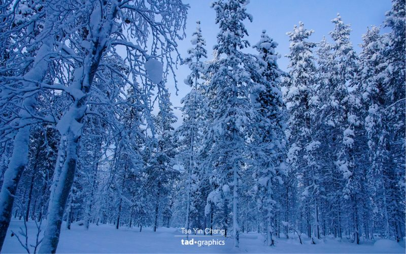 Winter wonderland in Lapland