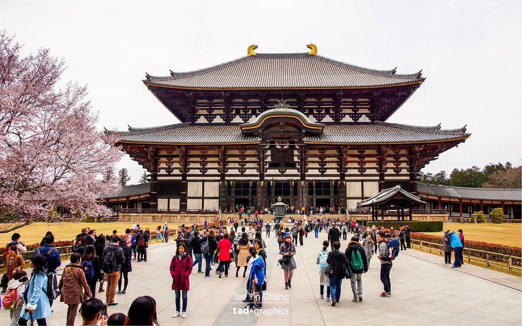 This incredibly beautiful Todai-ji ancient temple is a UNESCO listed World Heritage Site and also home to the largest bronze Buddha statue in the world