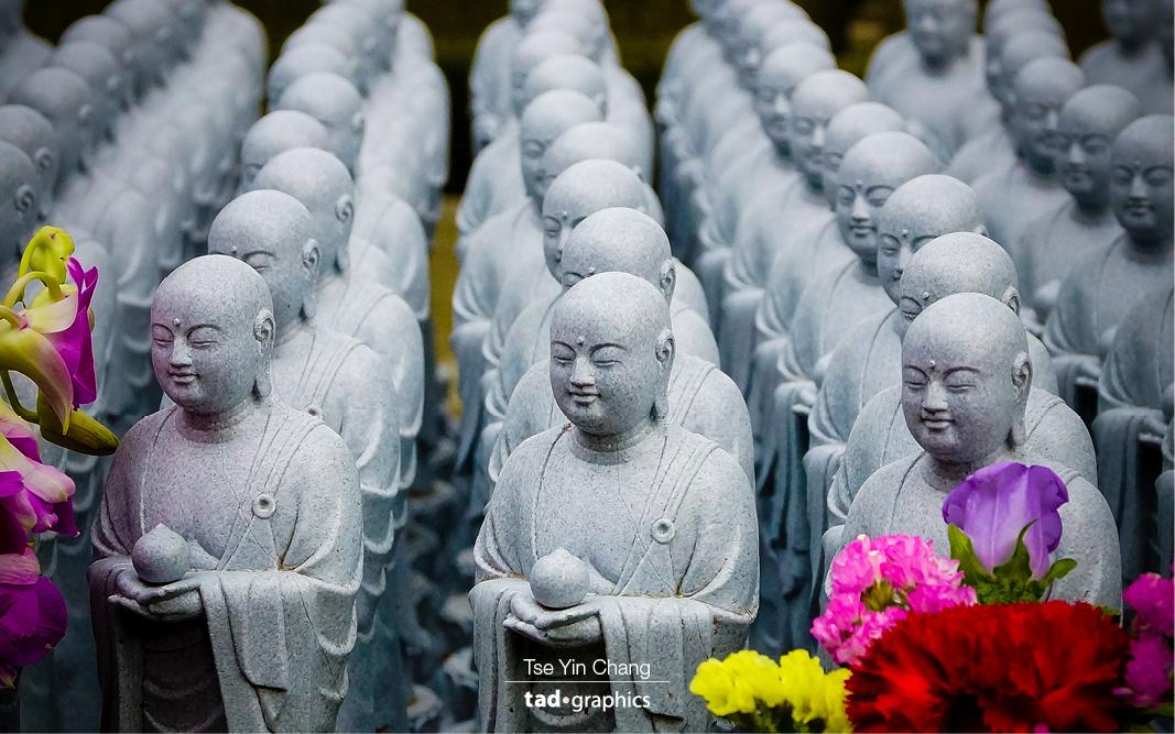 Mini Buddha statues in Hase Kannon