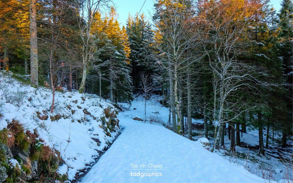 Mount Fløyen is covered in snow in winter