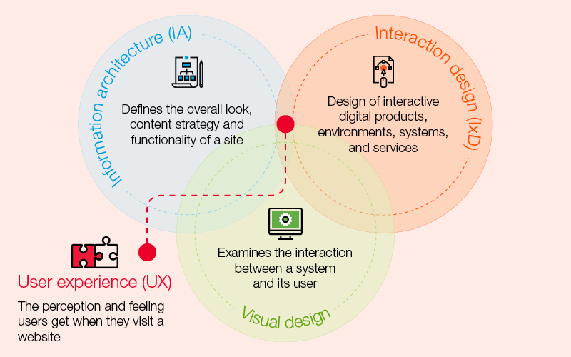 User experience for web and digital media
